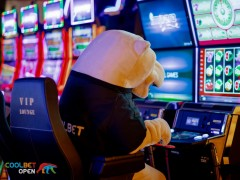 Karu käis kasiinos