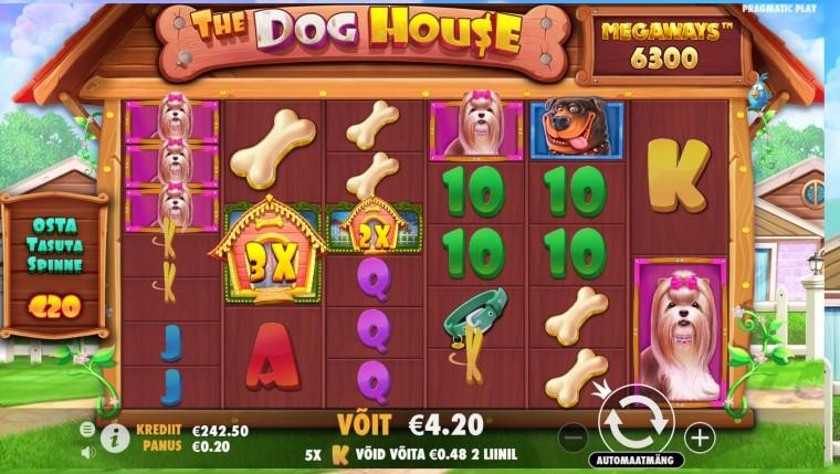 Kes lasi koerad välja? Proovi Betsafe'is uut slotimängu The Dog House Megaways!