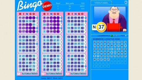 Bingo loto